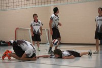 MHS Wolverines' Senior Boys Volleyball in Kenora