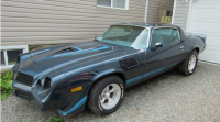 WAWA OPP : THEFT OF 79 CAMARO