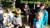 Students Explore Fall at Holy Angels' School