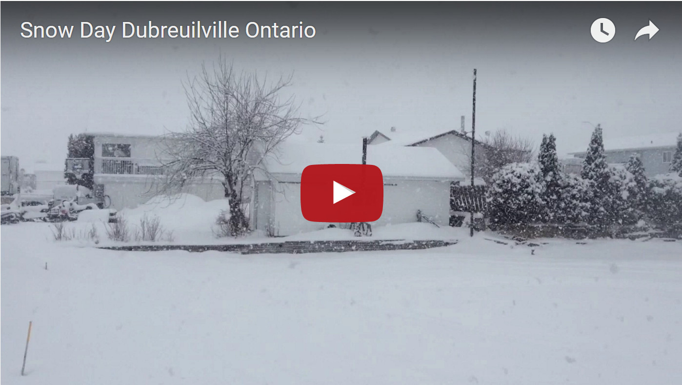 Snow Day in Dubreuiville from @TheGroomerGuy
